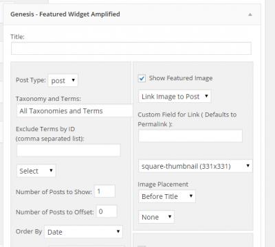 genesis-widget-amplified