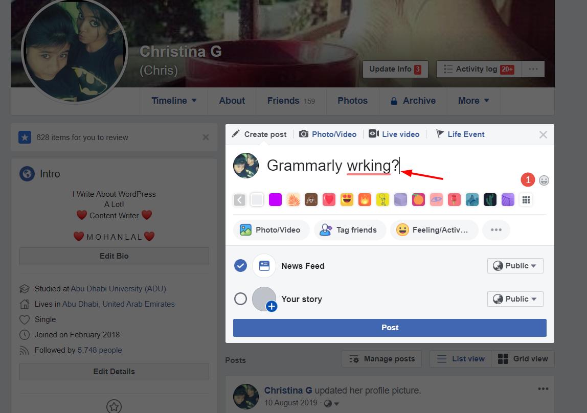 grammarly editor on fcebook